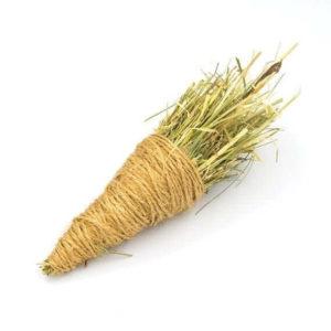 CarrotToyWeb