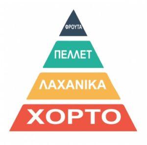 business company finance planning pyramid chart statics future 3 23370