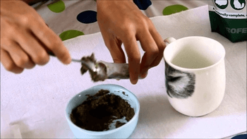 critical care κουνέλια
